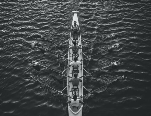 How Leaders Shape Culture to Improve Performance